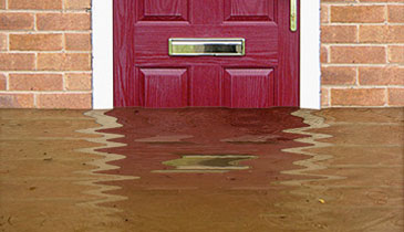Flood Doors